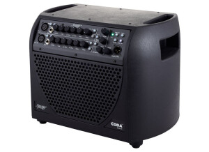 Acoustic Image Coda Series 4 611AA+