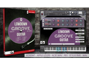 In Session Audio Lowdown Groove Guitar