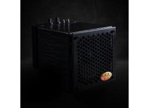 Guitar Sound Systems 05G200