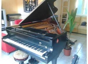 Danemann Concert grand piano
