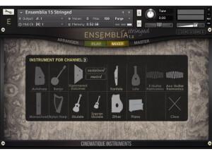 Cinematique Instruments Ensemblia Stringed