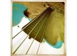 USA Custom Guitars Jazz Bass Fretless Neck