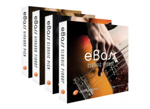 e-instruments eBass - Complete Bundle