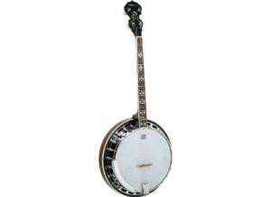 Ashbury Banjo AB45T