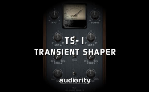Audiority TS-1 Transient Shaper