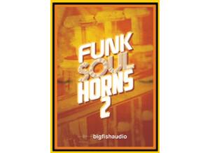 Big Fish Audio Funk Soul Horns 2