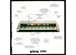 Welson gipsy star