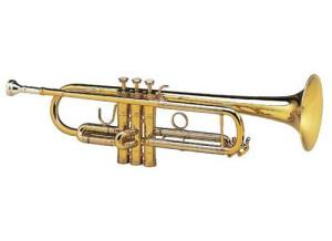 Selmer Chorus 80J