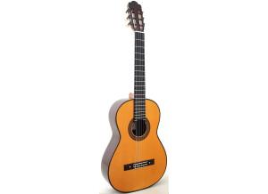 Hernandez Guitars Torres