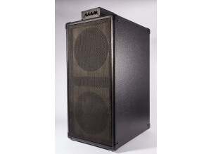 Guitar Sound Systems Double8c