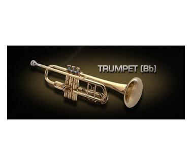 VSL (Vienna Symphonic Library) Trumpet (Bb)