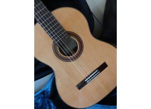 Ayman Bitar Guitare d'étude