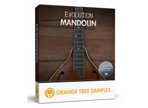 Orange Tree Samples Evolution Mandolin
