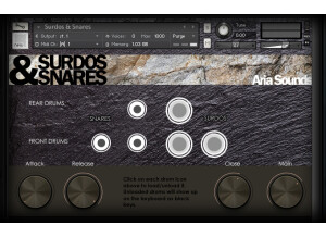 Aria Sounds Surdos & Snares