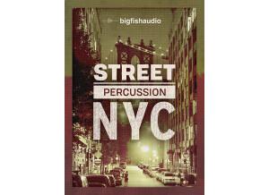 Big Fish Audio Street Percussion: NYC