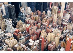 Shapingwaves New York