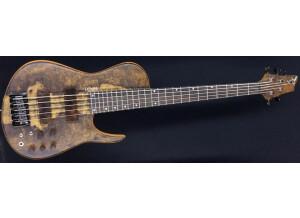 Dmark Guitars Omega