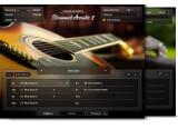 Vends NI Strummed Acoustic 2