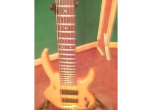 Hohner B Bass  VI