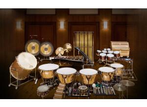 VSL (Vienna Symphonic Library) Synchron Percussion I
