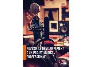 Milk Music Réussir le développement d'un projet musical professionnel