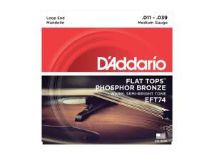 D'Addario Flat Tops Phosphor Bronze Wound Mandolin