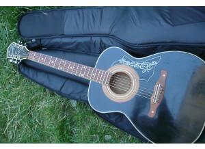 Harmony (String Instruments) H1204 black sovereign