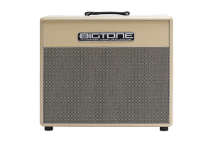 Bigtone Custom Amplification Studio Plex 22 Combo