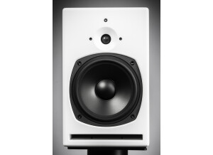 PSI Audio A21-M V4
