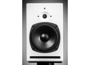 PSI Audio A21-M V4
