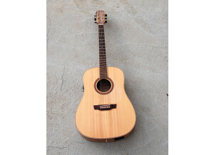 Maestro Guitars ED-2