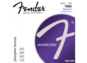 Fender Phosphor Bronze Bass