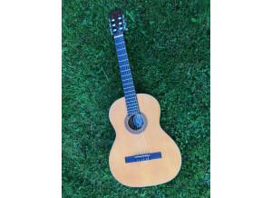 Diapason Guitars Gold 4