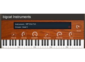 BIGcat Instruments NST Vocals