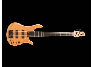 Fodera Guitars Monarch 5 Standard Special