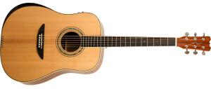 Reverse Tension Guitar D-430