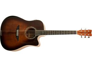 Reverse Tension Guitar D-430C