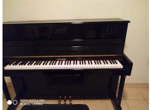 A.Grand piano droit