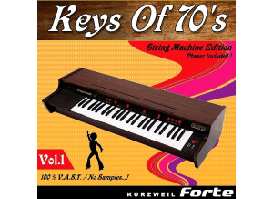 Barb and Co Keys Of 70's - Vol.1 - Solina
