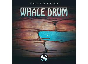 Soundiron Whale Drum