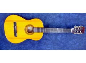 Diapason Guitars Bronze3