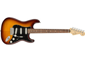 Fender Player Stratocaster Plus Top