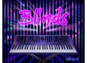 Edouard Blinds for Prologue