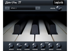 LoopLords Electric Pianos 77
