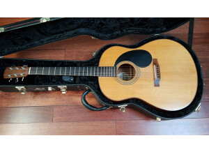 Gurian Guitars J-M