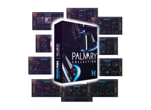 NoiseAsh Palmary Collection