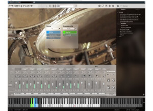 VSL (Vienna Symphonic Library) Synchron Power Drums