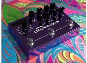 Strymon Chameleon