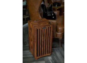 Fender One of A Kind Walnut Double Champ Amplifier 120V