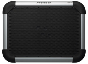 Pioneer S-FL1 flat panel speake